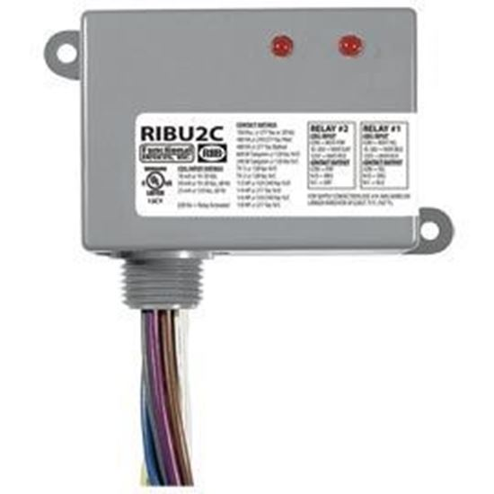 Picture of RIBU2C Enclosed Relays 10Amp 2 SPDT 10-30Vac/dc/120Vac