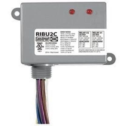 Picture of RIBU2C Enclosed Relays 10Amp 2 SPDT 10-30Vac/dc/120Vac